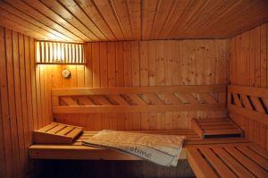 003-fritz_sauna